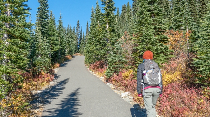 hiker through forest